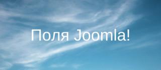 Примеры работы со встроенными полями Joomla